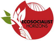 Ecosocialist Horizons Hour Image